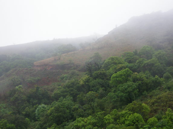 The mist covered valley of Baba Budangiri