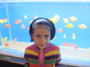Aquarium at the park. Picnic places in Pune